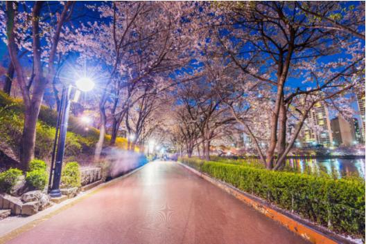 2018韩国旅游景点最美韩国旅游景区大盘点 中国资讯网
