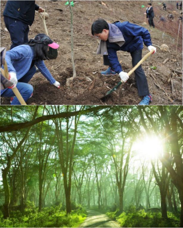 韩国京畿道提出的从根本上解决微尘的方法