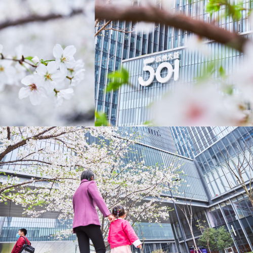 """杭州大厦501""""5为小哥免费送口罩""""公益活动温暖上线"""